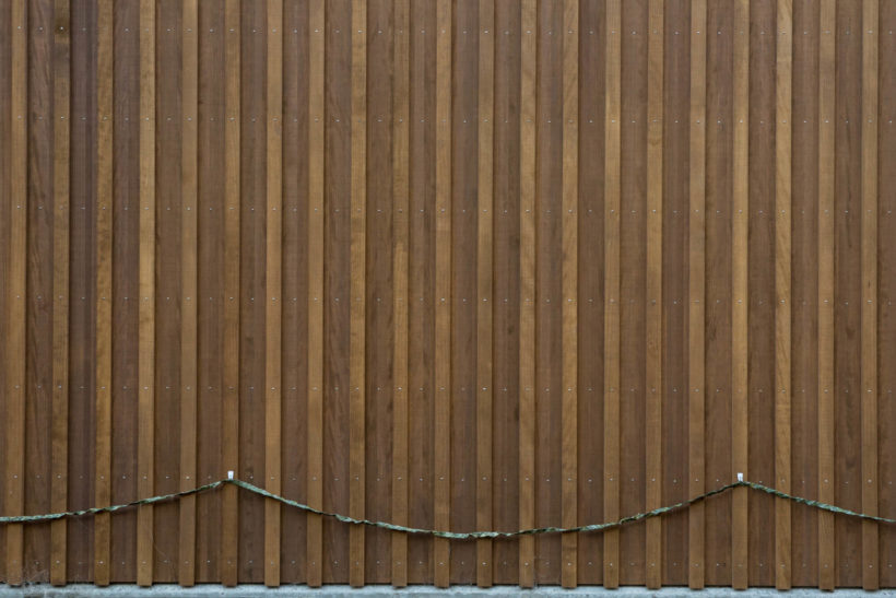 Hardwoods Vs Softwoods